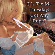 It's tie me Tuesday! Got Any Rope?