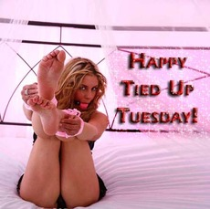 Happy Tied Up Tuesday!
