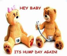 Hey Baby It's Hump Day Again