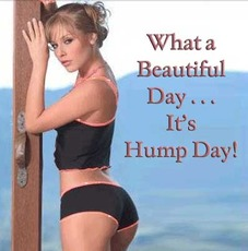 What a beautiful day... it's hump day!