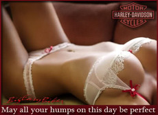 may all your humps on this day be perfect