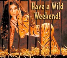 have a wild weekend
